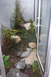 横浜で手入 横浜の植木屋 横浜の庭師