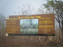 Mole Nationalpark