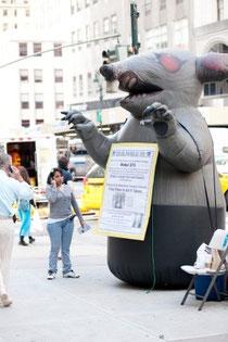Scabby the Rat(かさぶただらけのねずみ)というニックネームのついたねずみの巨大バルーン