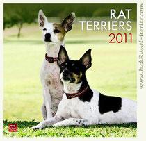Rut-terrier, Feist