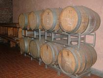Вино региона Лацио