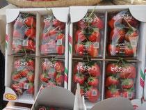 えみちゃんファームの苺