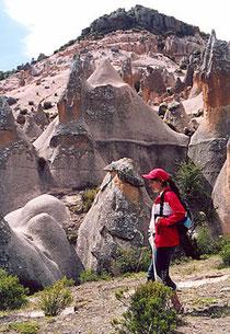 Bosque de Piedras de Pancula