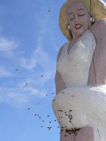 Marilyn Monroe für Bienen I