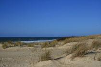 La dune littorale