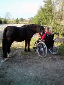 Andrea mit Jet beim Rollstuhltraining