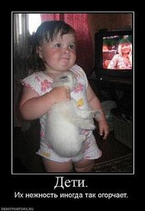Дети считают котят игрушками!