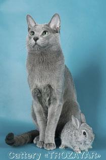Kimara Silvan Na Varro и кролик. Фото А.Брызгалова