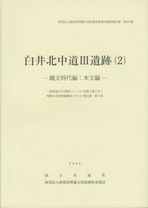 『白井北中道Ⅲ遺跡(2):縄文時代編』