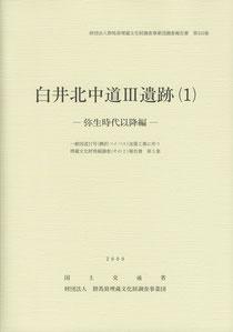 『白井北中道Ⅲ遺跡(1):弥生時代以降編』