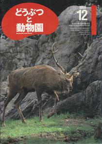 『どうぶつと動物園』第50巻第12号
