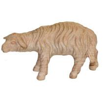 Bild Krippenfigur Schaf schauend handgeschnitzt aus Zirbenholz