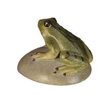 Bild Frosch auf Stein Nr. 1051 aus Ahornholz geschnitzt