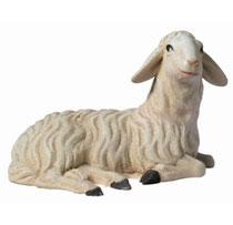 Bild Krippenfigur Mirja Schaf liegend rechts aus Ahornholz geschnitzt