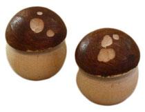 Bild Pilz aus gemischten Hölzern