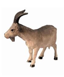 Bild Krippenfigur Mirja Ziege aus Ahornholz geschnitzt