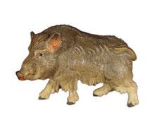 Bild Wildschwein Bache Nr. 1062