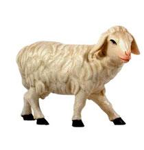 Bild Krippenfigur Joshua Schaf stehend aus Ahornholz geschnitzt