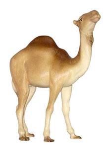 Bild Krippenfigur Mirja Kamel aus Ahornholz geschnitzt