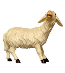 Bild Krippenfigur Mirja Schaf blöckend aus Ahornholz geschnitzt