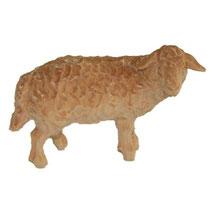 Bild Krippenfigur Schaf stehend rechtsschauend handgeschnitzt aus Zirbenholz