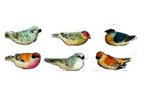 Bild Vögel 650036 handgeschnitzt aus Holz