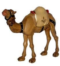 Bild Krippenfigur Thomas modern Kamel aus Ahornholz geschnitzt