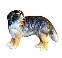 Bild Hund Bernersenn Nr. 1015 aus Ahornholz geschnitzt