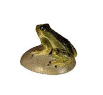 Bild Krippentier Frosch auf Stein aus Ahornholz geschnitzt