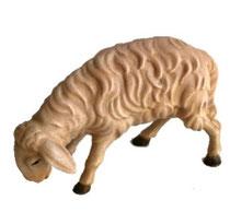 Bild Krippenfigur Joshua Schaf grasend aus Ahornholz geschnitzt