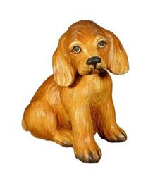 Bild Hund Cockerjunge Nr. 1016 aus Ahornholz geschnitzt