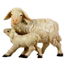 Bild Krippenfigur Joshua Schaf mit Lamm aus Ahornholz geschnitzt
