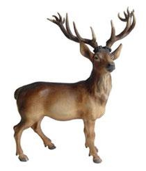 Bild Hirsch ohne Sockel Nr. 1136 aus Ahornholz geschnitzt