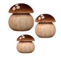 Bild Pilze aus Buchenholz