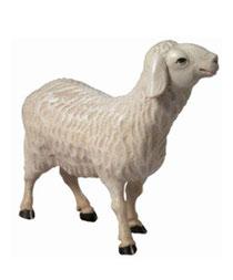 Bild Krippenfigur Schaf stehend aus Ahornholz geschnitzt