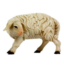 Bild Krippenfigur Joshua Schaf schauend aus Ahronholz geschnitzt