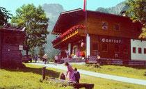 Alpengasthaus Falzturn