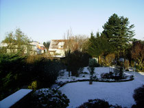 Winter in Garten