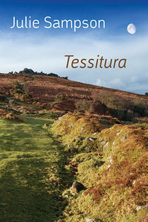 Cover of 'Tessitura', Julie Sampson's poetry collection.