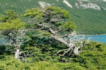 Situación Torres del Paine