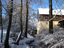 Burgsteinwanderung im Winterkleid