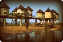 tsavo est taita hill safari
