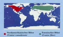 Biber Verbreitung weltweit