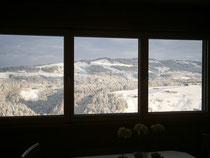 Blick von der Lounge zum Sulzberg