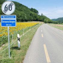 Strasse nach Merishausen