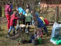 Pflanzung eines phänologischen Gartens in Herrsching
