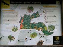 Naturschutzgebiet Ziegelberg