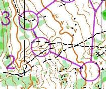 大会主催者より:駒ケ根高原周辺の地図