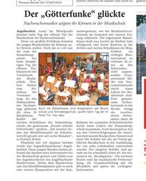 Bericht in der RNZ (13.3.13)
