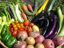旬の野菜・有機肥料を使った減農薬の野菜やJAS商品です